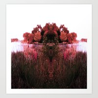 Nature's Calm Art Print