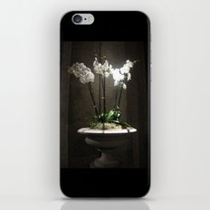 Grace Cathedral  iPhone & iPod Skin