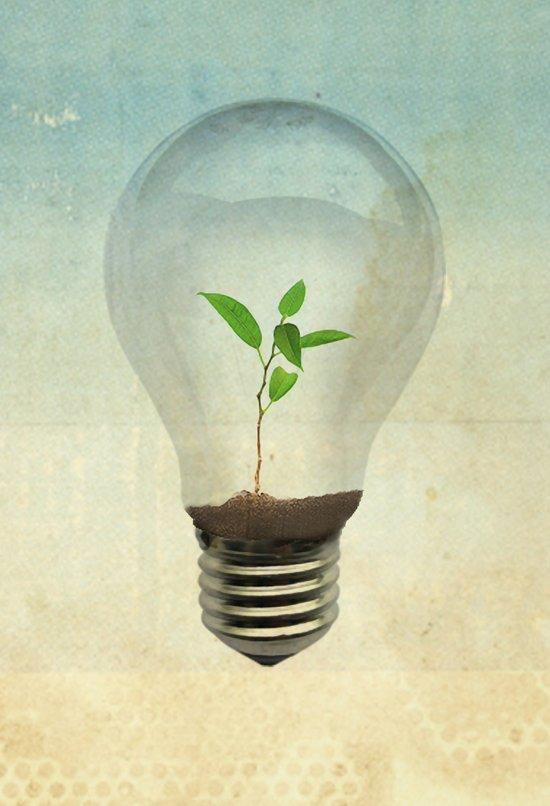 green ideas Canvas Print