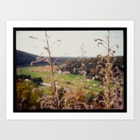 View From Castle Pappenh… Art Print