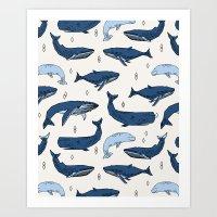 Whales By Andrea Lauren Art Print