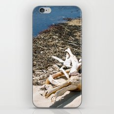 Sand Beach iPhone & iPod Skin