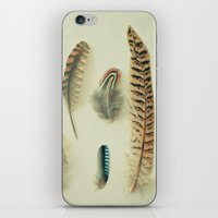 The Feather Collection iPhone & iPod Skin