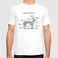Greyhound Anatomy Mens Fitted Tee White SMALL
