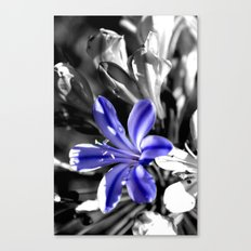 Just Grow #2 Canvas Print