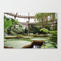 2009 - Winter Garden Canvas Print