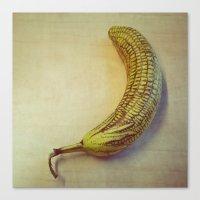 Corny Banana Canvas Print