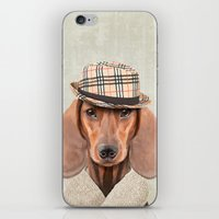 The stylish Mr Dachshund iPhone & iPod Skin