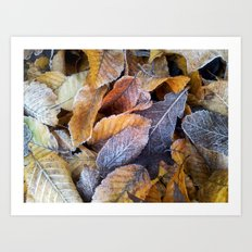 Frozen leaves Art Print