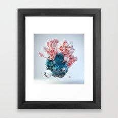 Mushroom Rock Framed Art Print