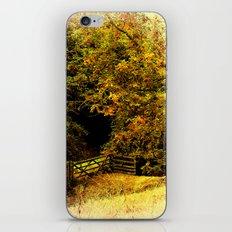 Meadow Gate iPhone & iPod Skin