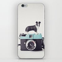 The Collie And The Diana iPhone & iPod Skin