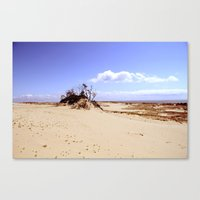 Dust In The Wind Canvas Print