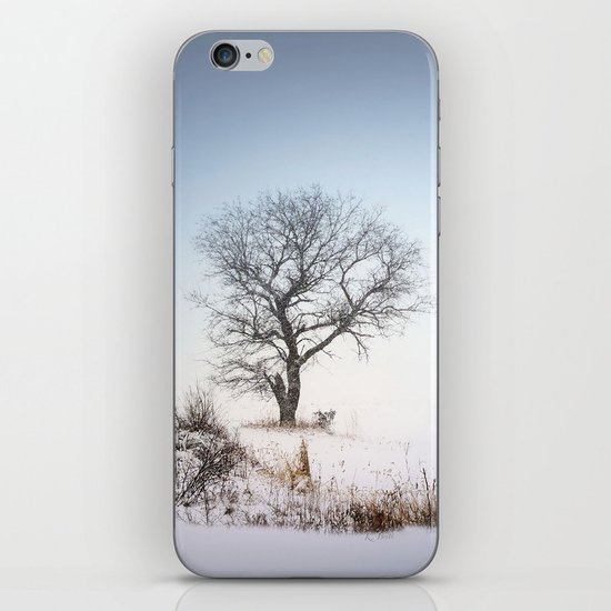 Winter Landscape iPhone & iPod Skin