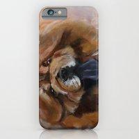Chow dog portrait iPhone 6 Slim Case