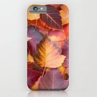 iPhone & iPod Case featuring Autumn's Carpet by Katie Kirkland Photography
