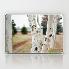 Line of Birches Laptop & iPad Skin