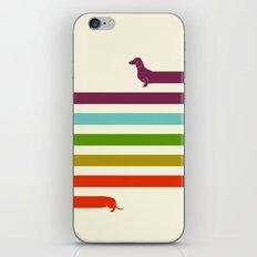 (Very) Long Dachshund iPhone & iPod Skin