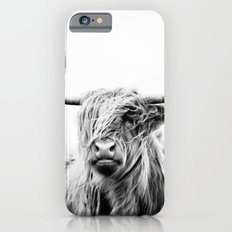 portrait of a highland cow iPhone 6 Slim Case