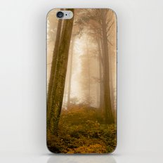 The Magic Forest iPhone & iPod Skin