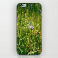 Tiny Daydreams iPhone & iPod Skin