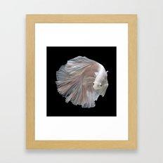 The Game Fish Framed Art Print
