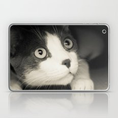 What do you think Mr Cat? Laptop & iPad Skin