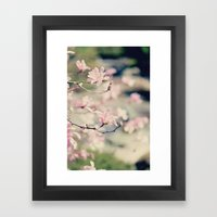 {Magnolia} Framed Art Print
