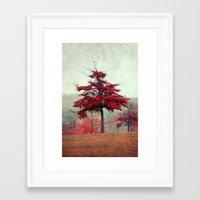 Rosso Framed Art Print