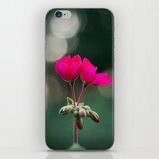 Opening iPhone & iPod Skin