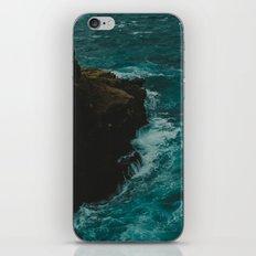 Big Sur Coastal iPhone & iPod Skin