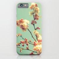 Spring Memory iPhone 6 Slim Case