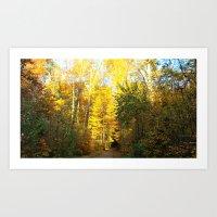 Forest In November Art Print