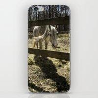 horse. iPhone & iPod Skin