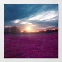 Sunset I C. Canvas Print