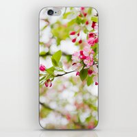 Spring Confetti Blossoms iPhone & iPod Skin