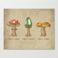 Mario Mycology Canvas Print