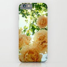 Summery Slim Case iPhone 6s