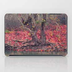 Landscape iPad Case