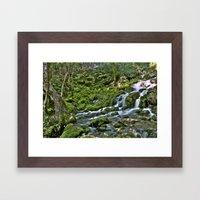 Natural Stream Framed Art Print