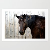Wind Swept Art Print