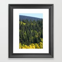 Many Shades Of Trees Framed Art Print
