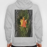 Singled Out Hoody