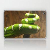 Tight Squeeze Laptop & iPad Skin