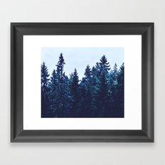 Firs CFILTER Framed Art Print