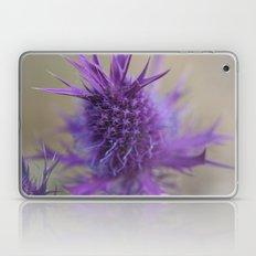 Purple Explosion Laptop & iPad Skin