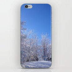 Rooftop & Trees iPhone & iPod Skin