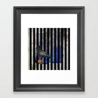 Crow Stripes Framed Art Print