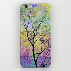 Late Sunset iPhone & iPod Skin