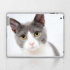 Cat Just Cat Laptop & iPad Skin
